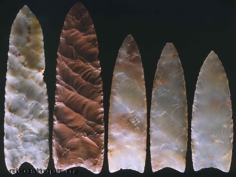 Kamennye-orudiya-Klovis