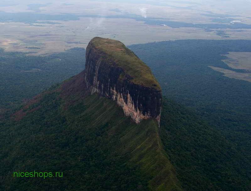 stolovaya-gora-ptari-tepui-venesuela