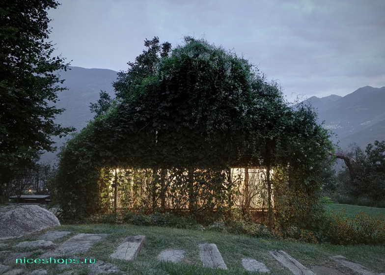 vertikalnoe-ozelenenie-chastnogo-doma-italiya