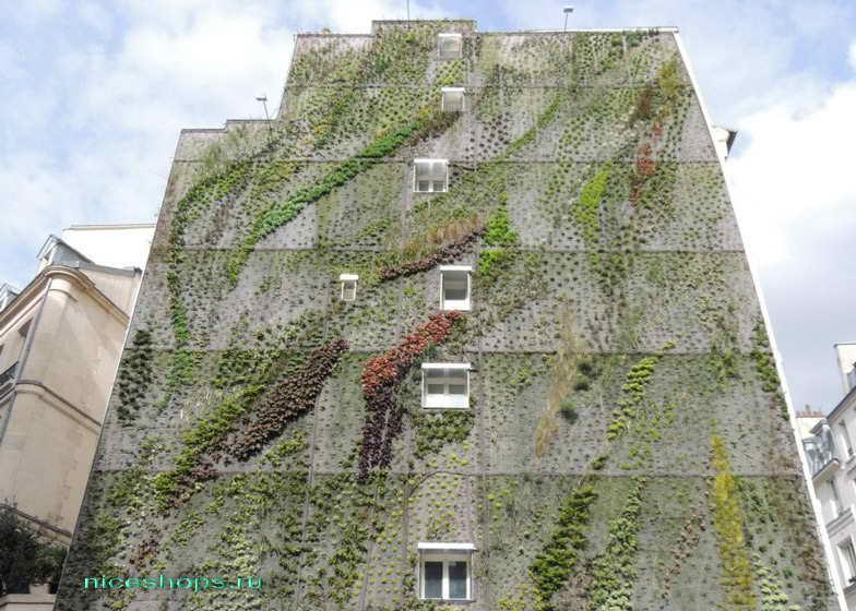 vertikalnye-sady-Patrick-Blanc-Paris-4