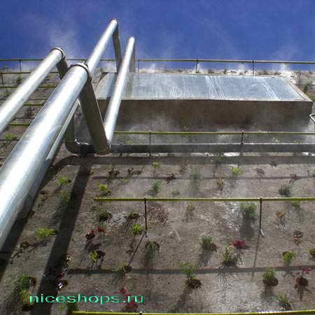 vertikalnye-sady-gorodov-mira-organicheskij-beton-2