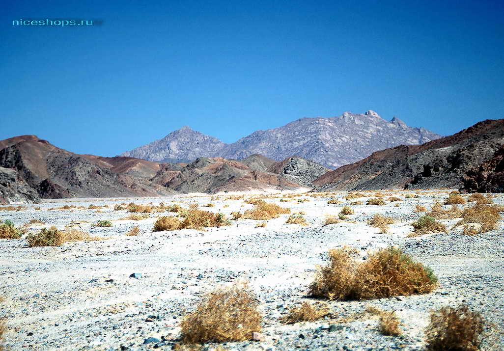 zagadki-pustyni-sahary-sneg-2