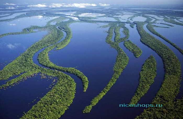 Самая длинная река мира Амазонка