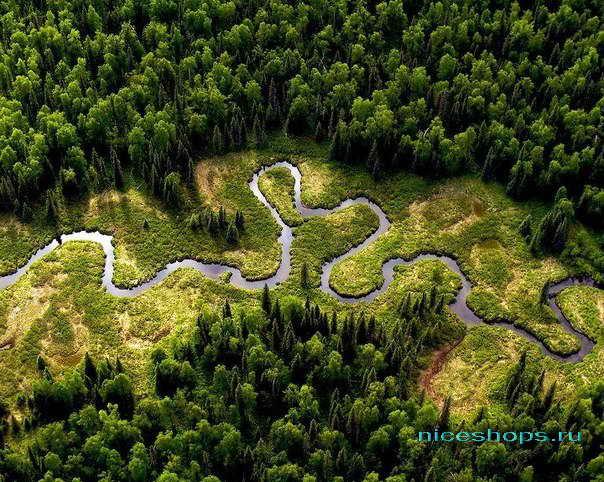 Крупная река мира Амазонка