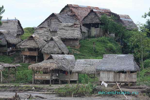 Поселение аборигенов из тропических лесов реки Амазонки