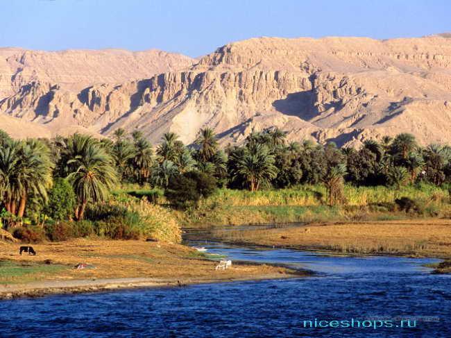 Самая крупная река Африки - Нил