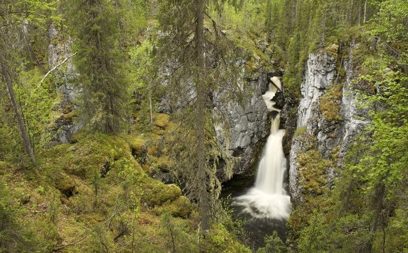 Водопады в девственных лесах Коми