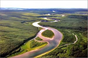 Девственные леса Коми - объект ЮНЕСКО в России