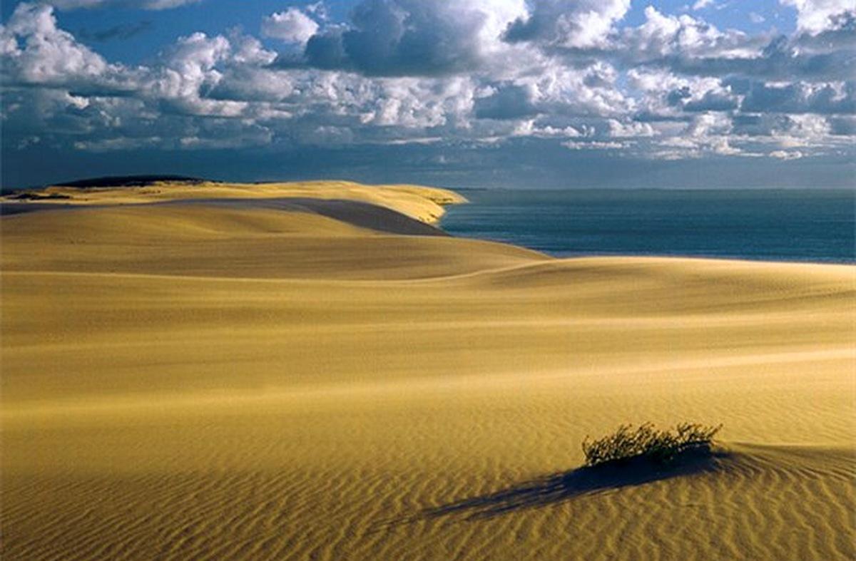 Пески Куршской косы