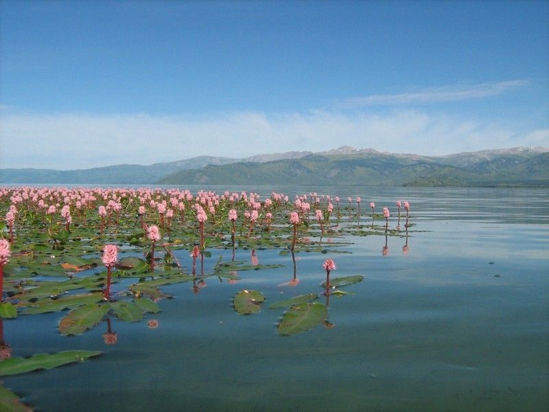 Озеро Маркаколь в золотых горах Алтая