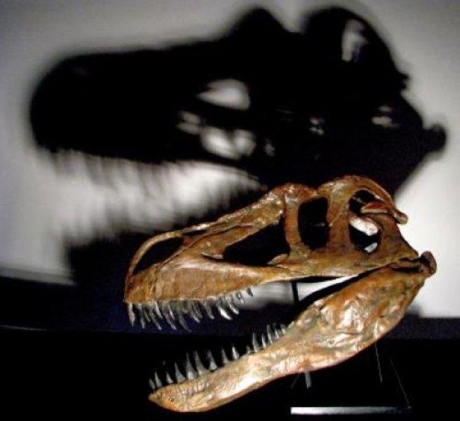 hisshnye-dinozavry-tarbozavr