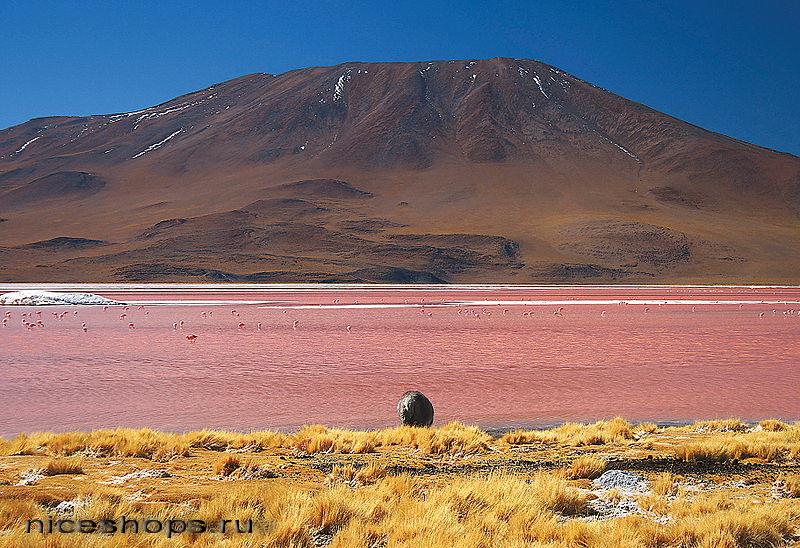 Solenye-ozera-Juzhnoj-Ameriki