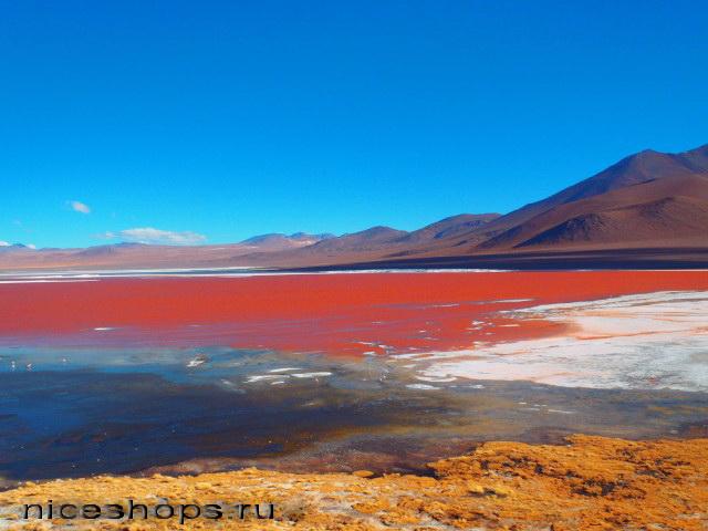 Laguna-Kolorada-v-Bolivii