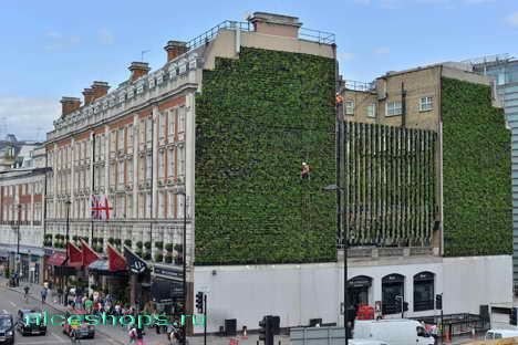vertikalnoe-ozelenenie-goroda-London-rubens-hotel-3