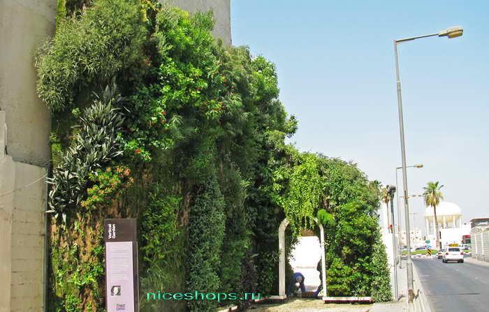 vertikalnoe-ozelenenie-muzey-Patrick-Blanc-Bahrejn