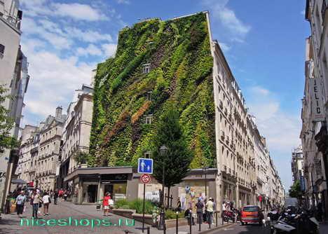 vertikalnye-sady-Patrick-Blanc-Paris