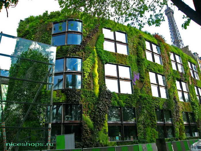 vertikalnye-sady-Patrick-Blanc-muzey-Paris