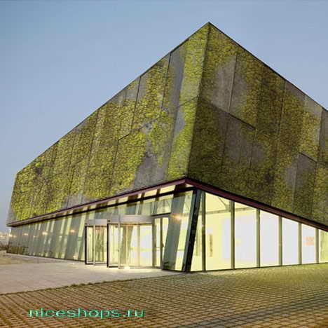 vertikalnye-sady-gorodov-mira-organicheskij-beton-1
