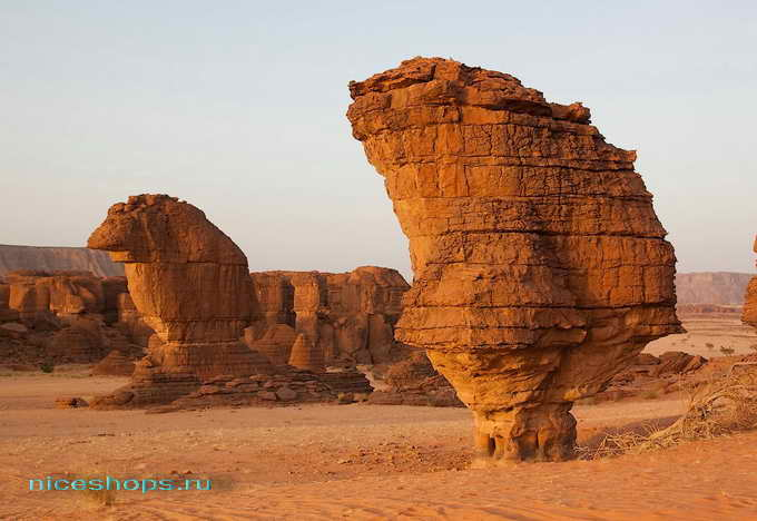 Ландшафт пустыни Сахара - гелта Даршей