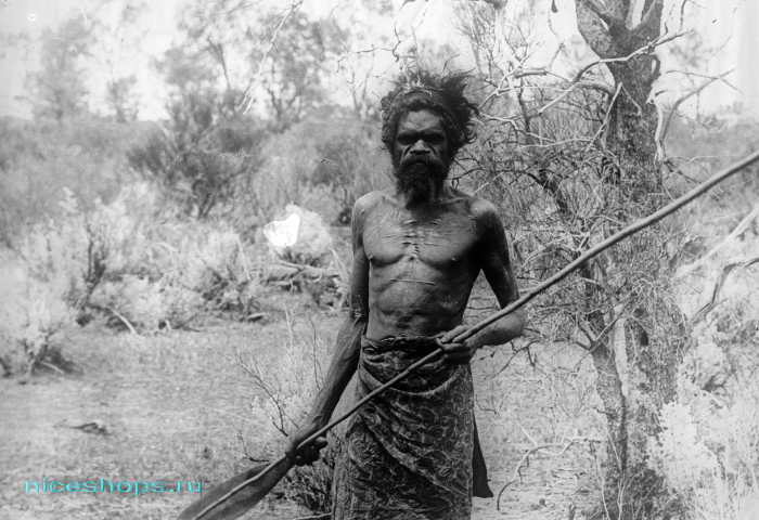 Австралийские аборигены - бушмены