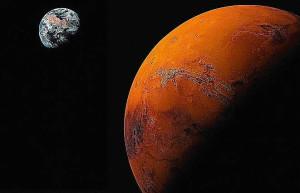 Antarkticheskie-griby-vyzhili-v-Marsianskih-uslovijah