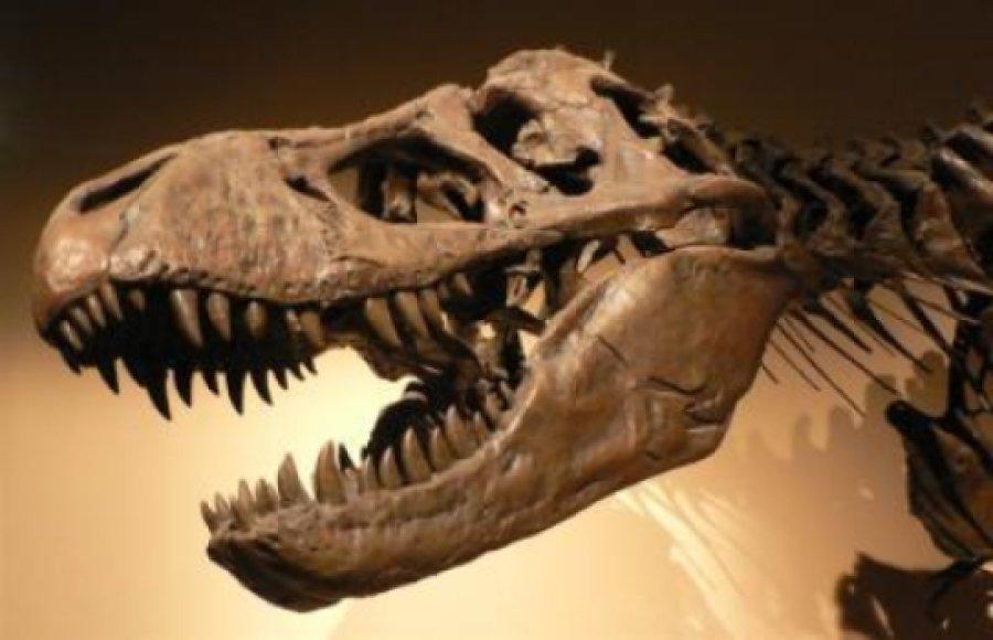 hisshnye-dinozavry-tirannozavr-1