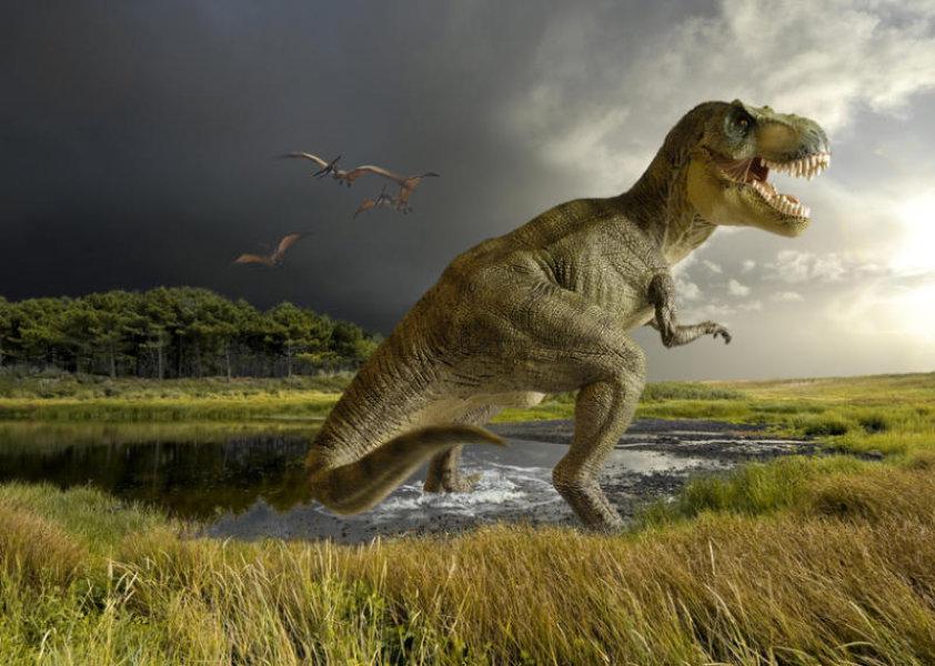hisshnye-dinozavry-tirannozavr