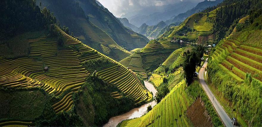 risovye-terrasy-vietnam