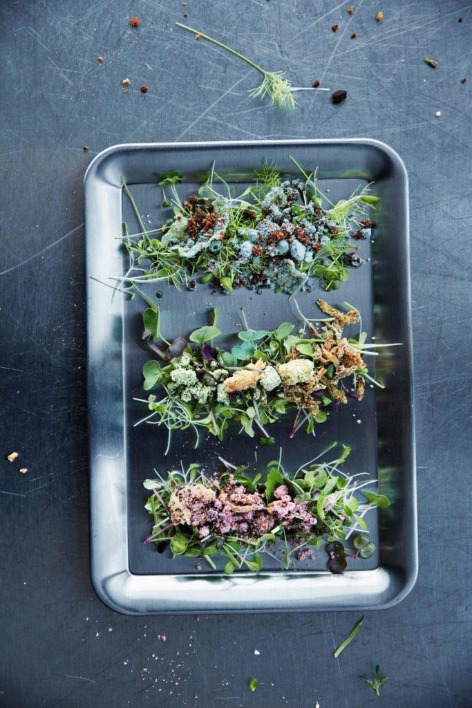 Еда будущего - хот-док с салатом из проросших семян