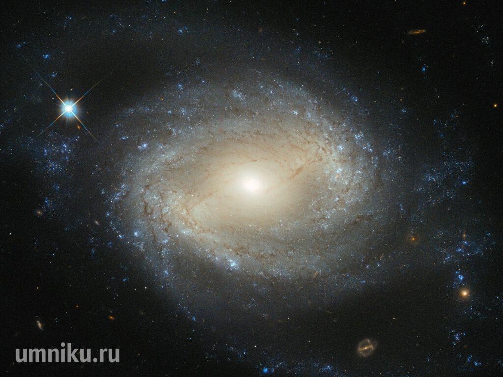 Созвездие Девы, черная дыра: фото с телескопа Хаббл