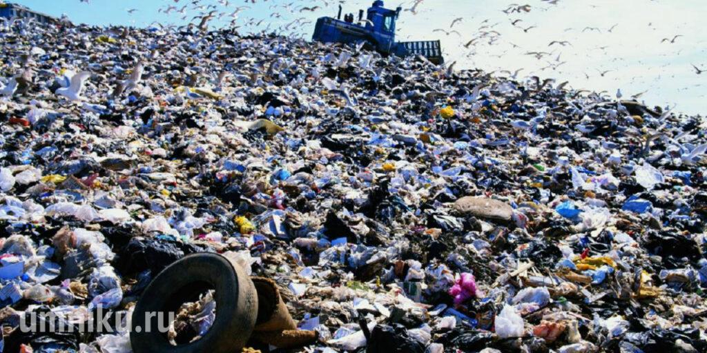 свалка мусора бытовые отходы