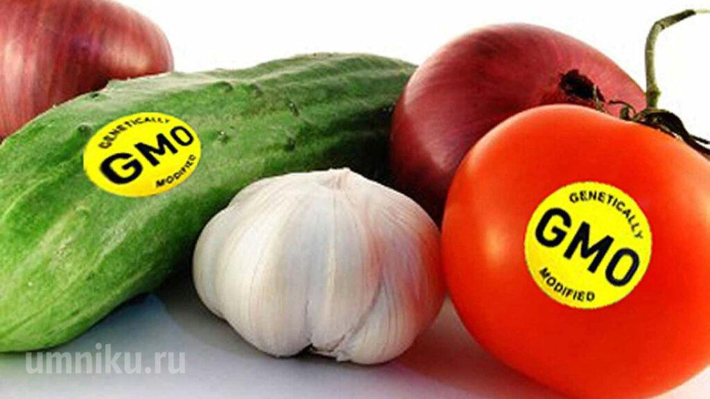 Продукты содержащие ГМО