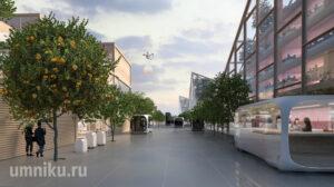 Тойота город будущего улицы