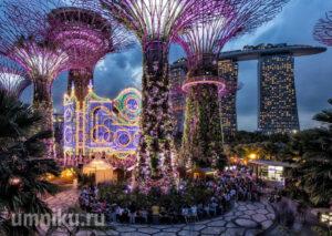 Сады залива в Сингапуре: фото